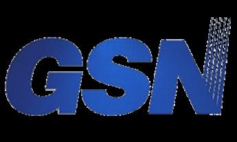 Logo de la marca GSN